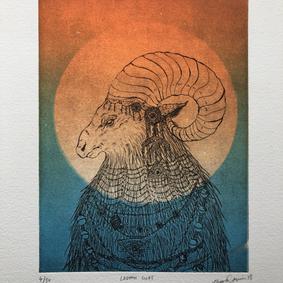 """Ladakh Goat"""