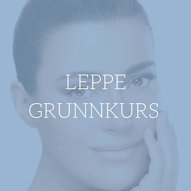 Leppe Grunnkurs