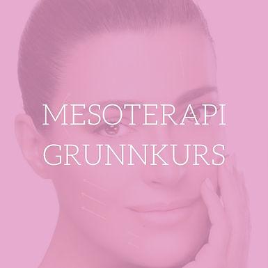 Mesoterapi/Redermalization Grunnkurs