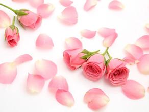 Sciroppo di Rose: ricetta