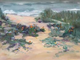 Dunes at Pescadero