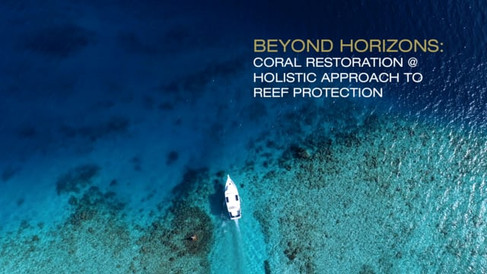 Coral Restoration & Holistic approach to reef protection