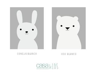 Conejo / Oso