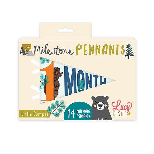 Little Camper Petit Milestone Pennant