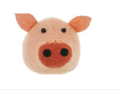 Pig Head- Semi