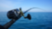 fishing_rod_and_reel_wallpaper-gallery.p