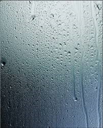 10 BENEFITS TO USING A DEHUMIDIFIER