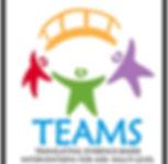 TEAMS logo_big.jpg