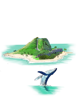 Whale_And_Island_.png