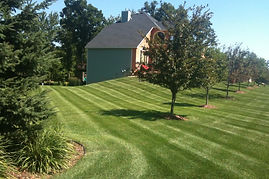 landscape maintenance nj