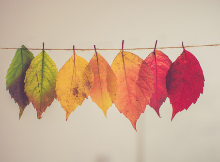 The Brighter English A-Z of Amazing Autumn Words