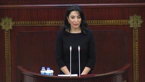 Ombudsman Milli Məclisdə hesabat verir