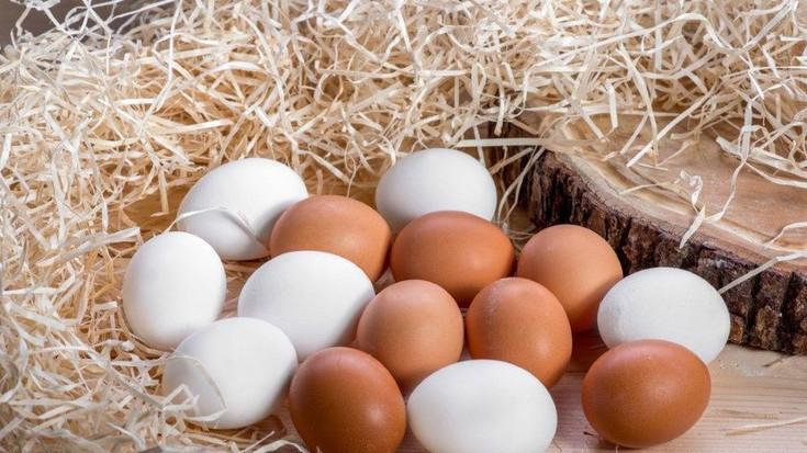 Azərbaycanda yumurta bahalaşıb