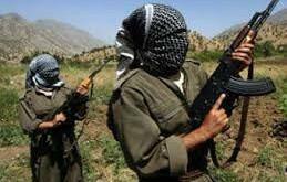 Türkiyə ordusu 8 terrorçunu məhv etdi