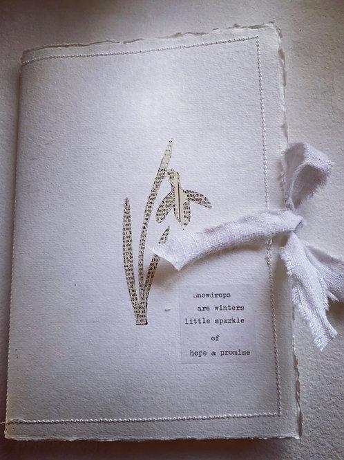 Snowdrop Sketch book