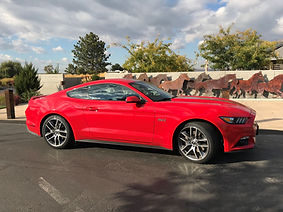 New Mustang Horses 2.jpg