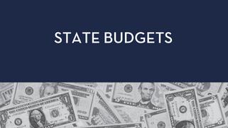 2021 State Budget Advocacy