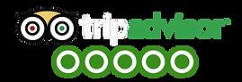 tripadvisor rating icon.png