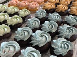 cupcake 14