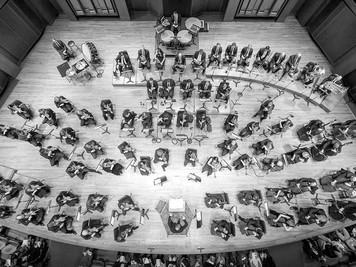 The Amazing Seattle Symphony