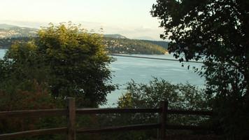 Leschi Natural Area