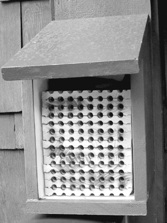 Bee Shelters