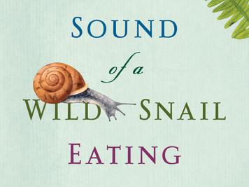 A Wild New England Gastropod