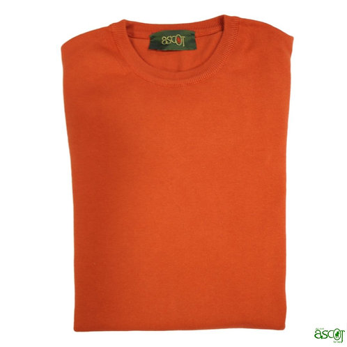 Men's cotton sweater wit smooth round neck