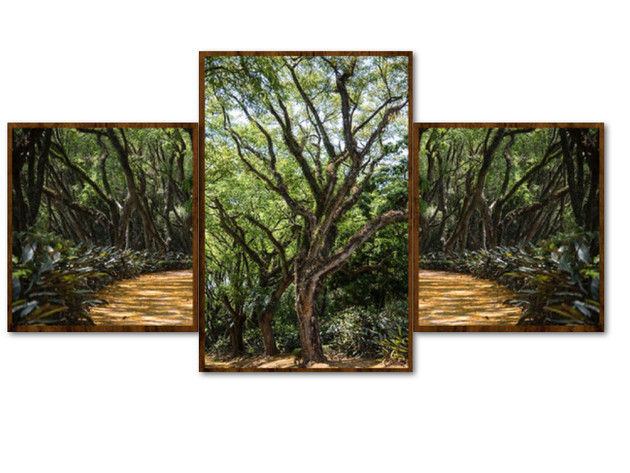 Floresta Encantada - tríptico
