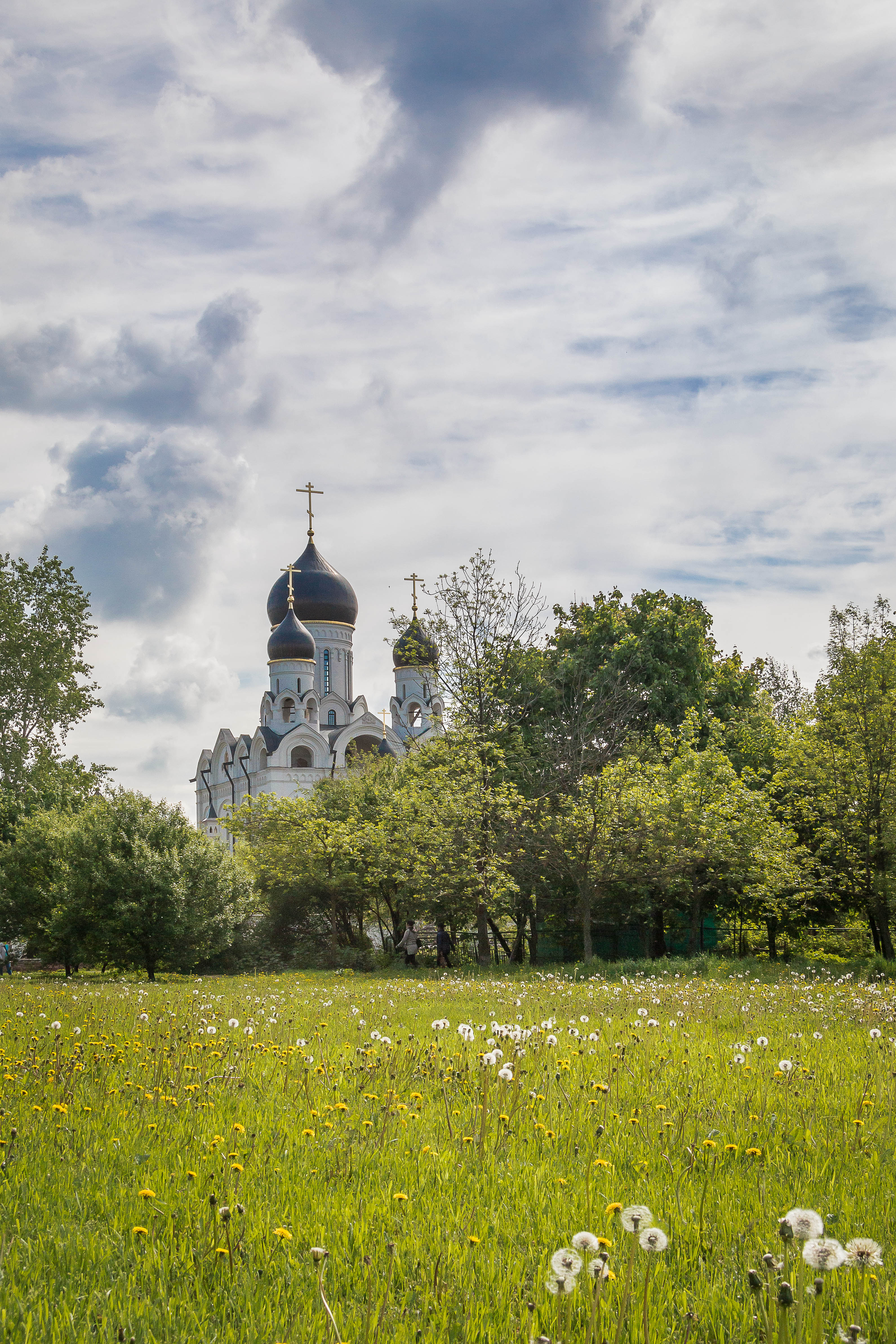 Фотограф на крестины | Defilm.ru
