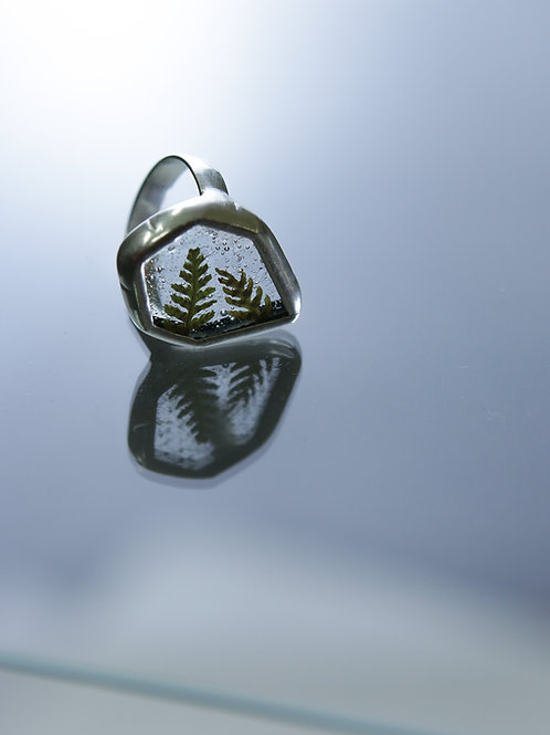 Кольцо «Льдинка с папоротником»