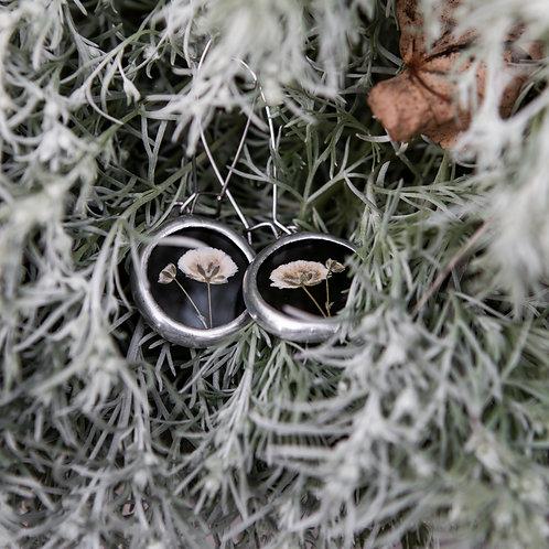 Серьги с гербарием гипсофилы на чёрном стекле