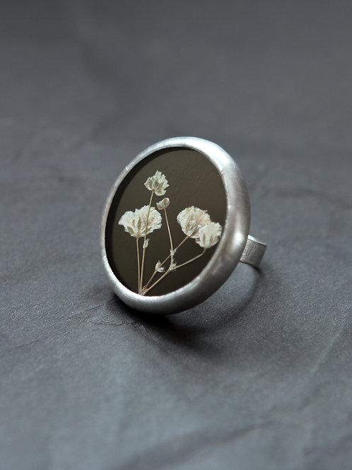 Кольцо с гербарием гипсофилы на чёрном стекле