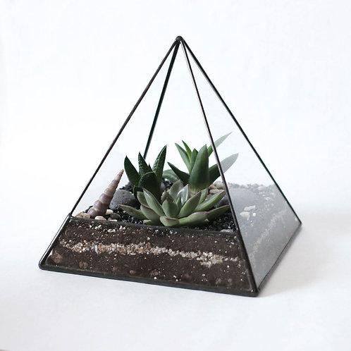 """Флорариум в форме """"Пирамида"""""""