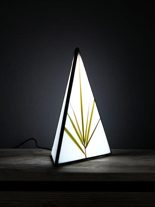 Светильник с гербарием