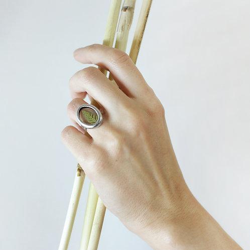 Милое кольцо с гербарием папоротника