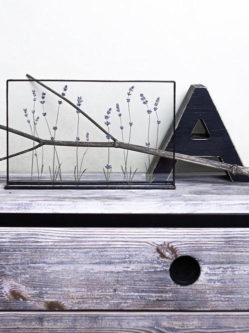 Настольный декор с лавандой в черной рамке