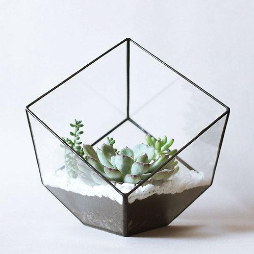 """Флорариум в форме """"Куб"""""""