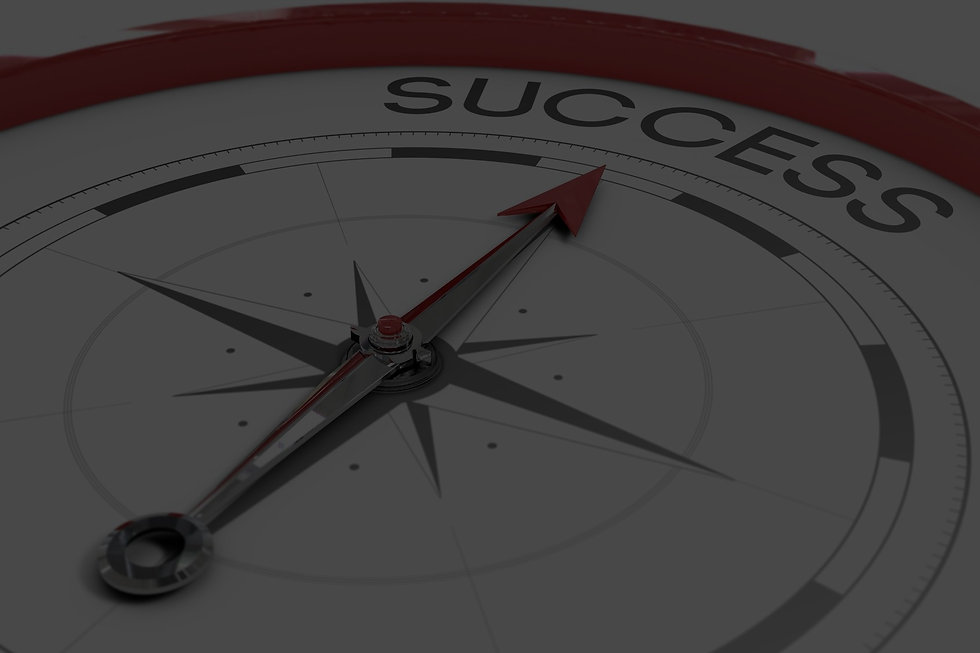 SuccessCompass_edited.jpg