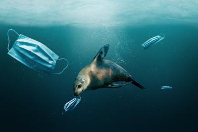 """Okyanuslarda 1,6 Milyar Maske """"Yüzüyor"""""""