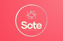 04_sote_logo_orta.jpg