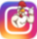 Instagram | Gallu's