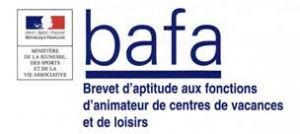 bafa-300x134 (1).jpg