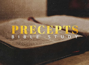 Web-Precepts.jpg