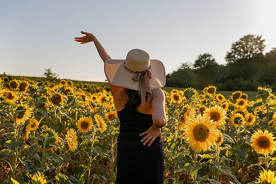 sunflowers-5482116_640.jpg