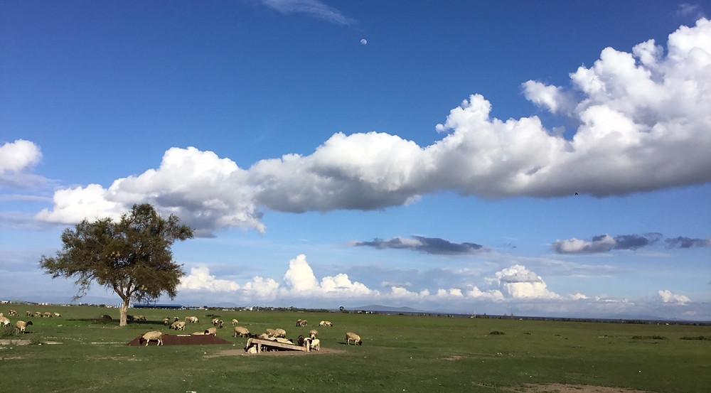 Kajiado Sky
