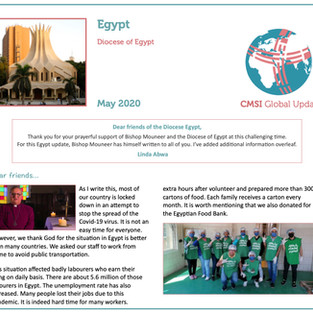 Updates From Egypt & Kenya