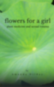 flowers for a girl front book cover.png