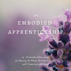 embodied apprenticeship.png