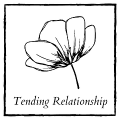 tending relationship.png
